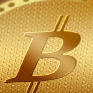 buy-bitcoins-in-sri-lanka-prathilaba-sinhala-website