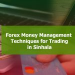 Forex Money management techniques in Sinhala for Forex Traders