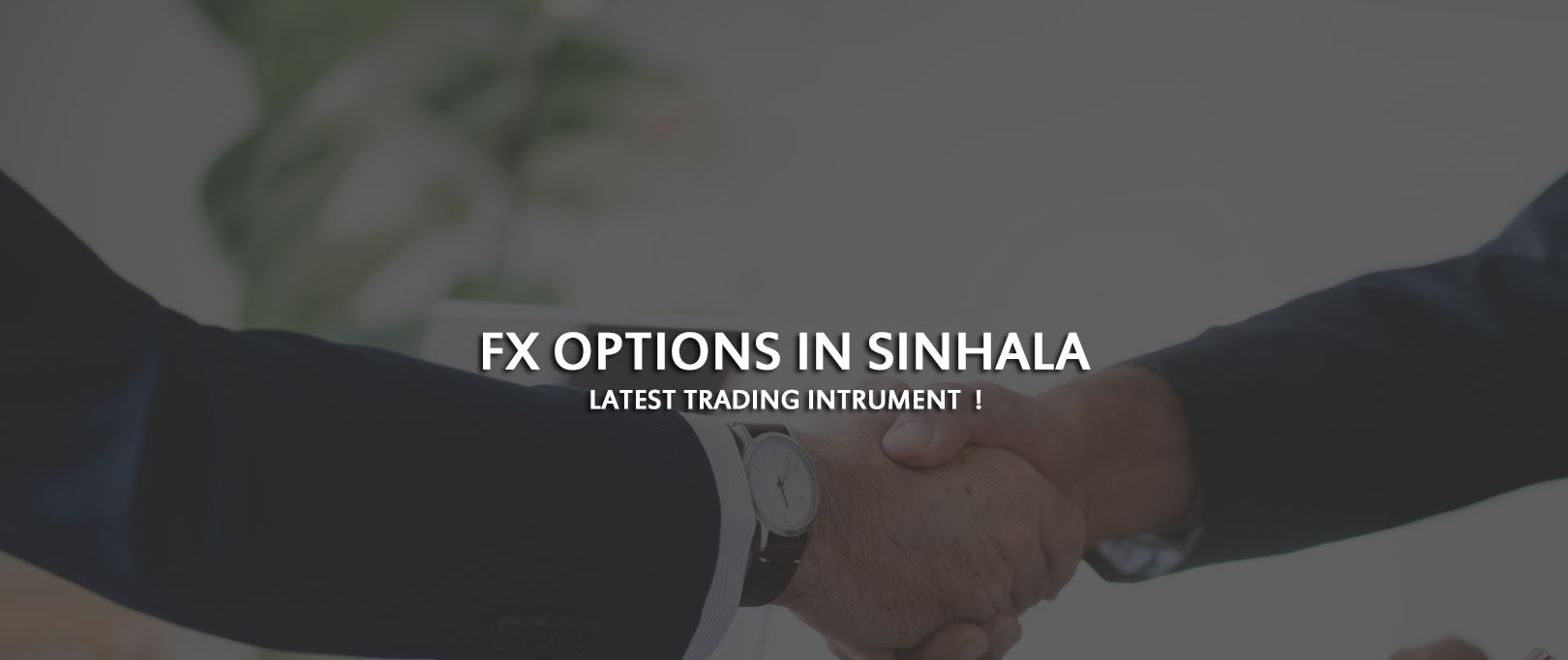 FX Options in Sinhala