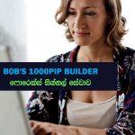 Bobs's 1000 Pip Builder - Premium Forex  Signal Provider Review - Sri Lanka - ගෙවා ලබාගත යුතු සිග්නල් සේවයක්